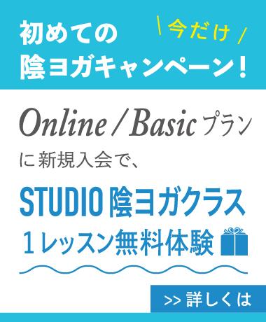 OnlinexStudio-(2)